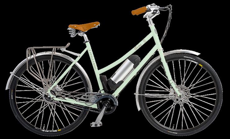 Fifield_caladesi-bike_seagreen