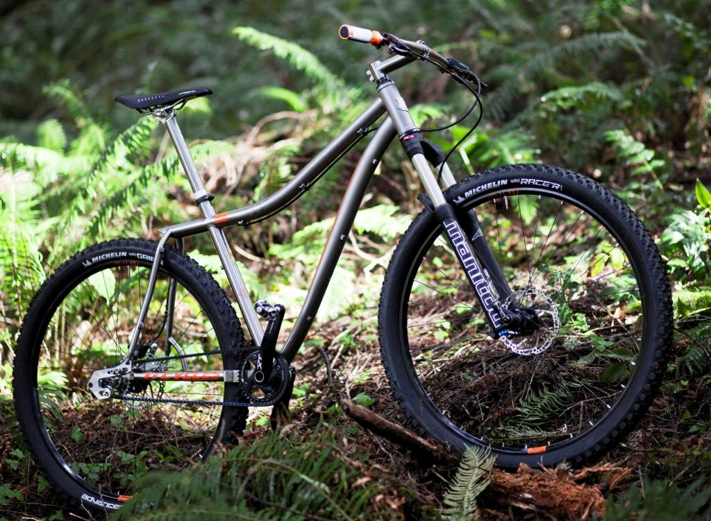 Ti Cycles Bonestealer_profile in ferns