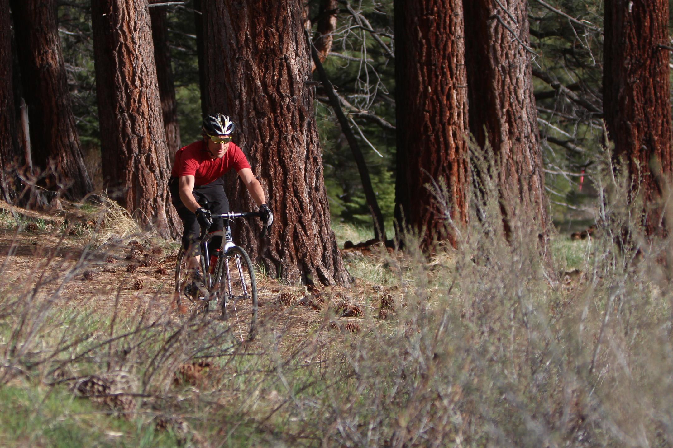 Paul on Hodala through pines