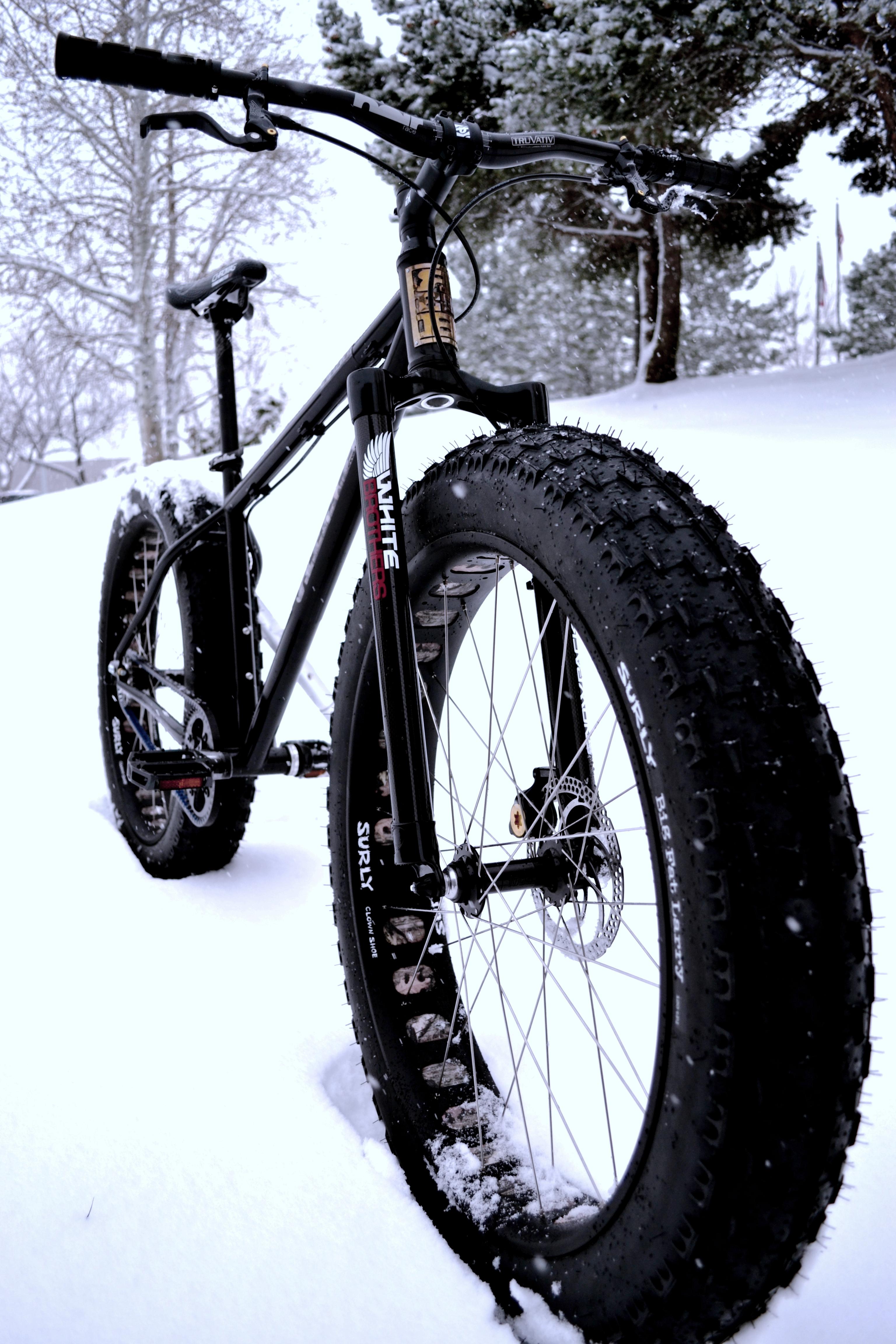 REEBadonk in snow