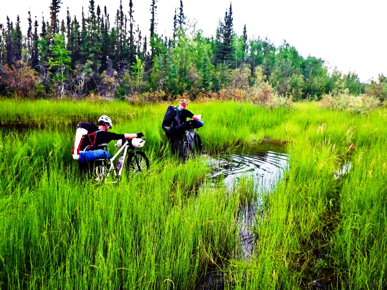 Ryan Stuart_BC Expedition Swamp Crossing