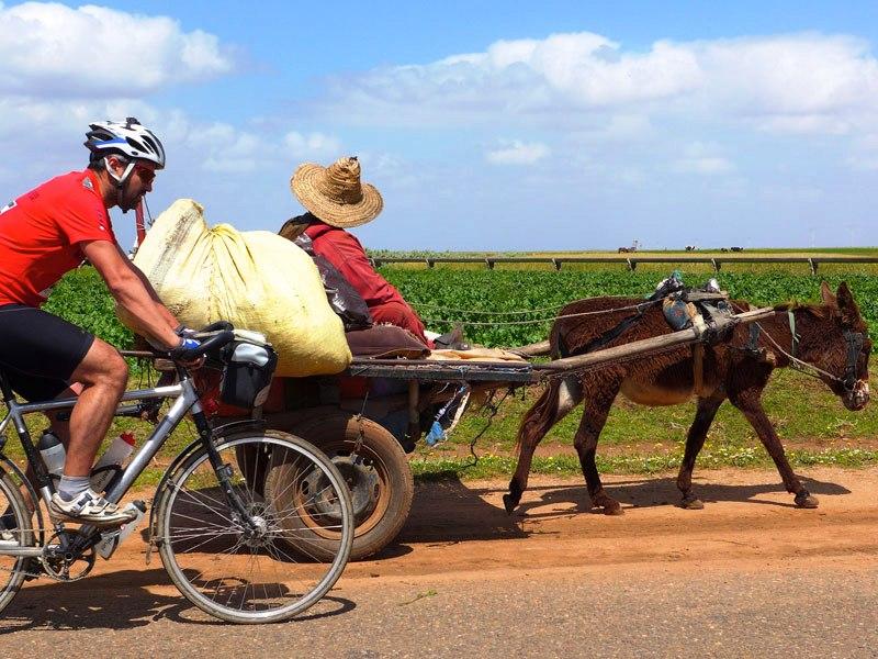 Kapp to Cape reza-donkey cart