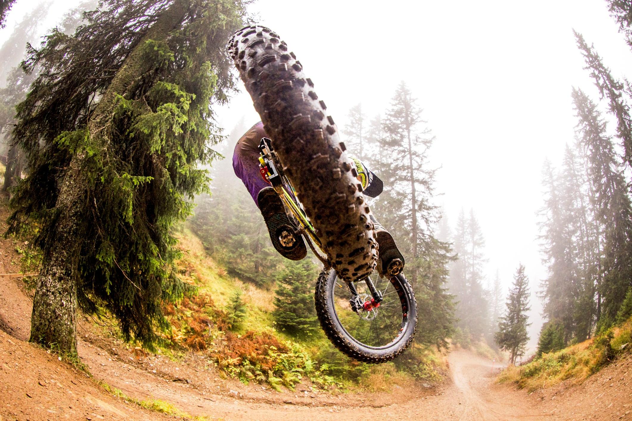 David Graf_fat rear tire