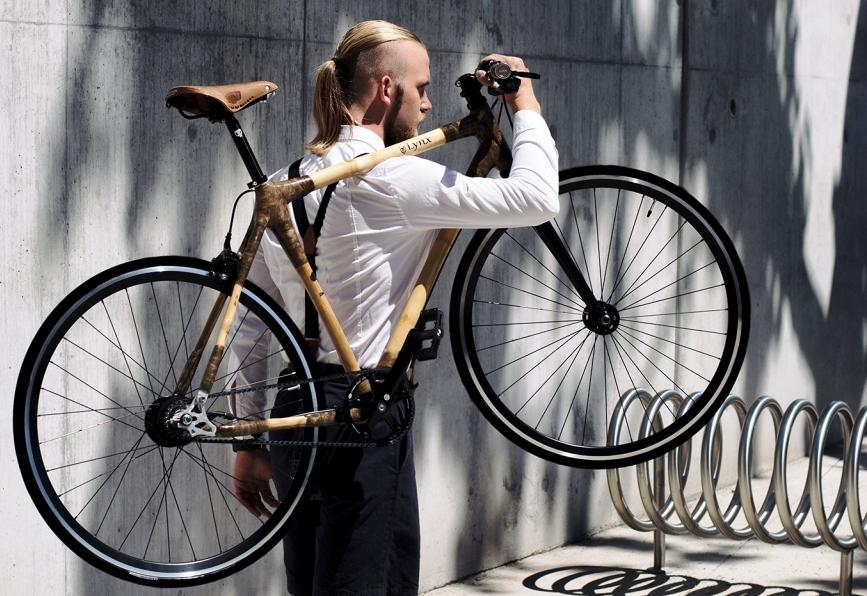 Lynx-Poland-bike on shoulder