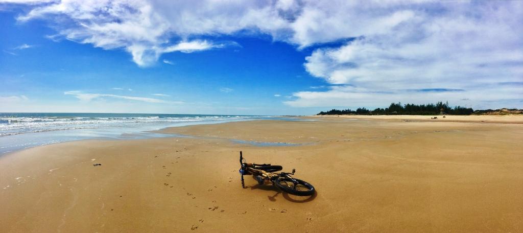 Wolf-Vietnam-beach